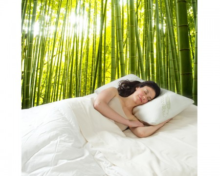 BAMBOO PILLOW X2